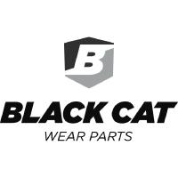 BlackCat-200x200